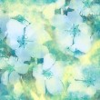 Flower vintage background - Stock Photo