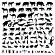 100 Animal Silhouettes — Stock Vector