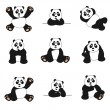 Cute Panda Set — Stock Vector