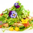 Green salad - Stock Photo