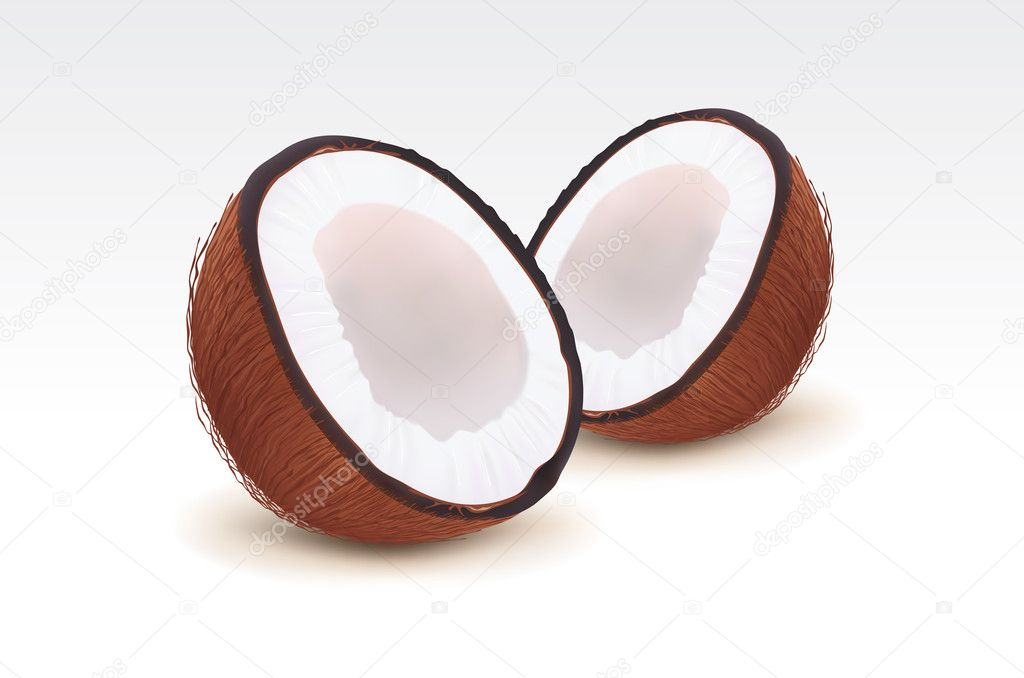 Broken coconut isolated — Stock Vector #5405091