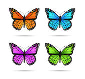 Butterflies — Stock Vector