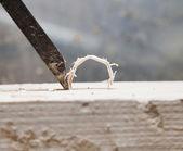 Detalle chisle — Foto de Stock