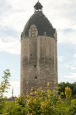 Donjon thick william — Foto de Stock