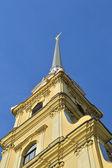 市中心 st 彼得和保罗大教堂的钟楼 — 图库照片
