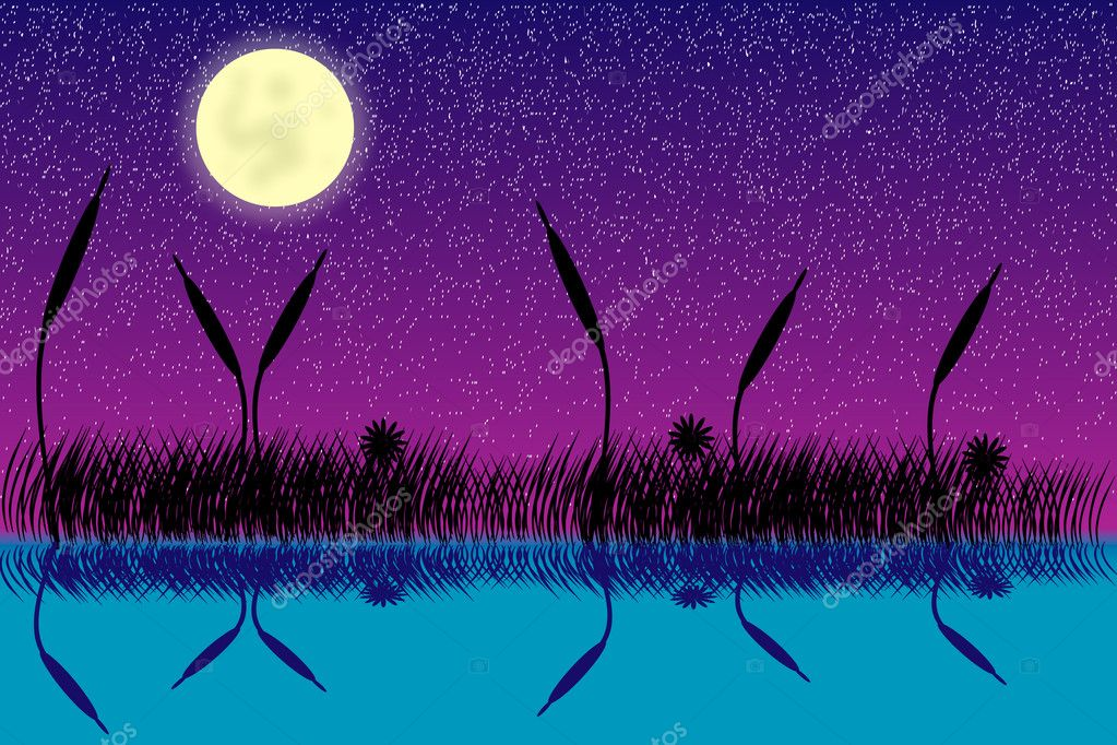 Vector illustration of lake night scene with grass silhouette — Stock Vector #6112644