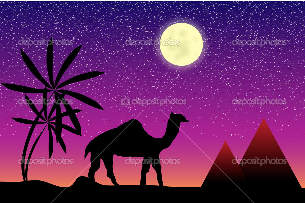 Night in Egypt with palms, pyramids and camel  Stock Vector #6115083