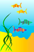 The underwater world of fish — Stock Vector