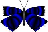 Motýl na bílém — Stock vektor