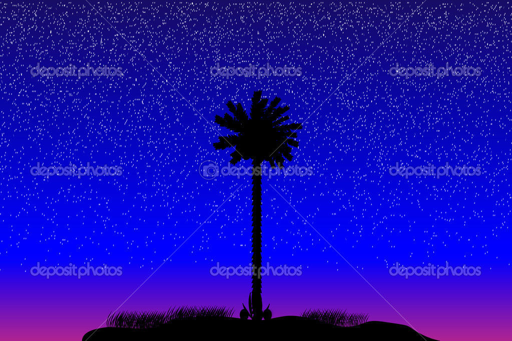 Silhouette of a tropical island at night - vector — Stock Vector #6372324