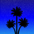 Silhouette of a palm trees at night — Stock Vector