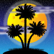 Silhouette of a palm trees at night — Stock Vector #6389392