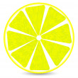 lemon slice — Stock Vector