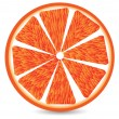 Orange segment — Stock Vector