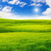 Nice sky over grass hill — Stock Photo