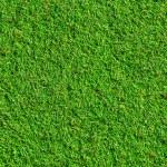 tekstury trawy — Zdjęcie stockowe