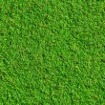 gras textuur — Stockfoto