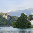Blejsko jezero, Bled — Stock Photo #5403023