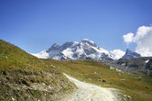 Mountain trail in Alps — Stockfoto