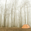 Royalty-Free Stock Photo: Foggy camping place