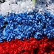 Stock Photo: Three coloures of flag from flowers