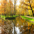 Stock Photo: Autumn in park, pond