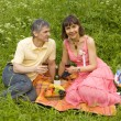 Young couple on picnic — Stock Photo #6508022