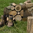 Logs and old shoes — Stock Photo #5471892