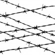Barbed wire fence protection isolated on white for background texture — Stock Photo