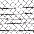 Barbed wire fence protection isolated on white for background texture — Stock Photo #5432762
