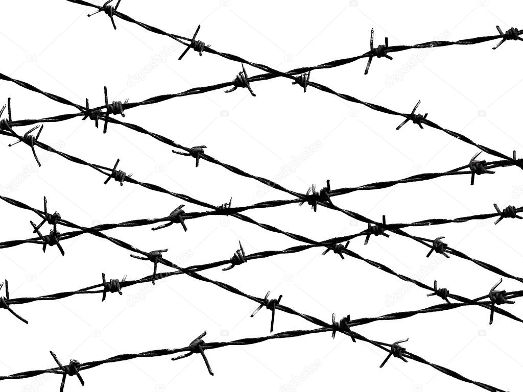 Barbed wire fence protection isolated on white for ...