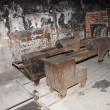 Stock Photo: Crematorium in Auschwitz camp 1