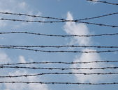 Barbed wire fence, Auschwitz, Konzentrations lager — Stock Photo