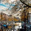 Bicycle in amsterdam — Stock Photo