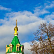 Dome of church — Stock Photo #6319090
