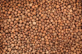Background of pepper — Stock Photo