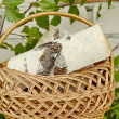 BASKET,WOOD,NEEDLEWORK, - Stock Photo