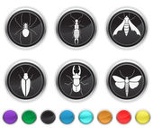 Bugs icons,each color icon is set on a different layer — Stock Vector