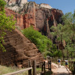 Zion National Park — Stock Photo #5450295