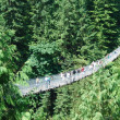 Capilano Bridge — Stock Photo