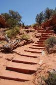 Sentiers à arches national park — Photo