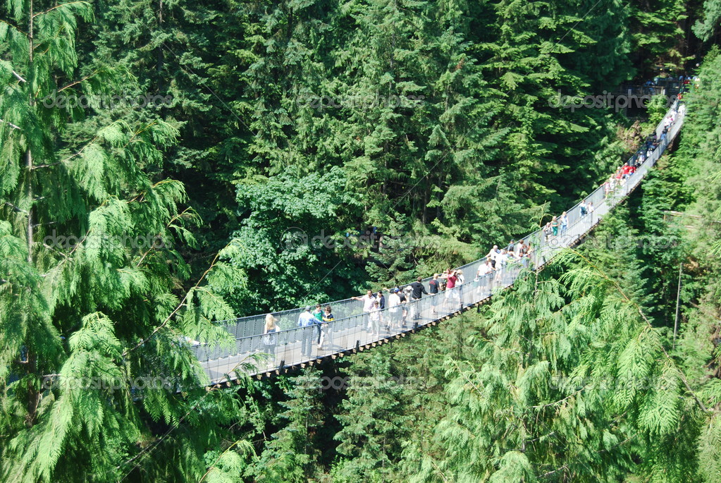 Capilano Bridge in Vancouver — Stock Photo #5450424
