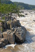 Great Falls — Stock Photo