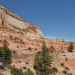 Zion National Park — Stock Photo #5476083