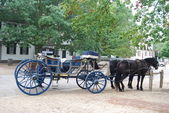 Williamsburg Carriage Ride — Stockfoto