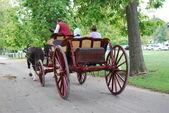 Williamsburg Carriage Ride — Stock Photo