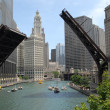 Downtown Chicago — Stock Photo #6376076
