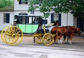 Horse Carriage in Virginia, MD USA — Stock Photo