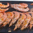 Shrimp prawns — Stock Photo