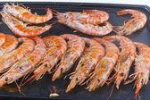 Shrimp prawns — Stock Photo